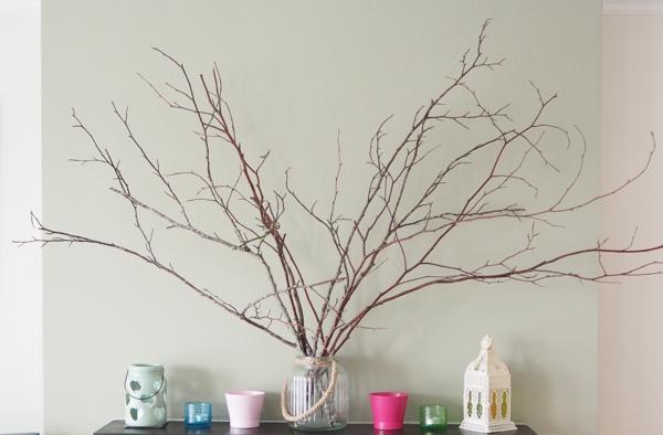 twigs4
