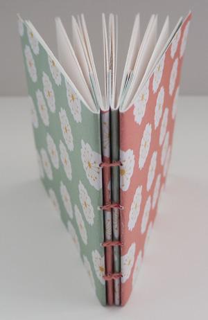book41300